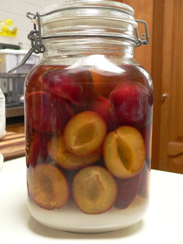 Plum crazy fig jam and lime cordial - Plum jam without sugar homemade taste and health ...